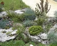 озеленяване открити площи
